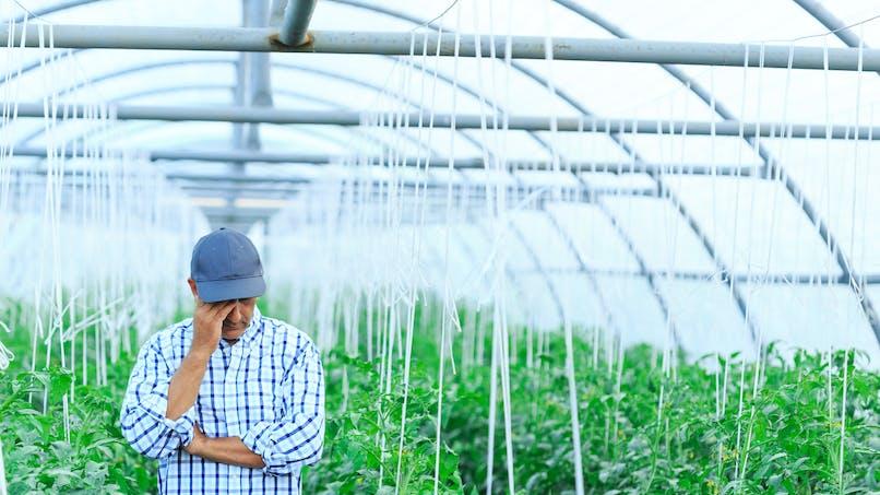 La dépression toujours très présente chez les agriculteurs