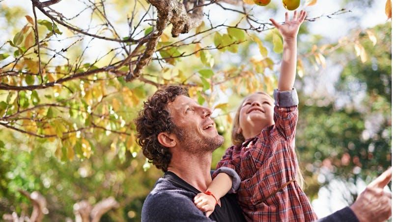 Être entouré d'espaces verts durant l'enfance améliorerait la santé mentale