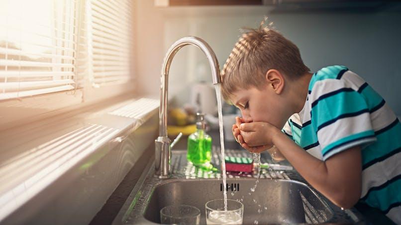 Nitrates, pesticides: comment préserver la qualité de l'eau potable?