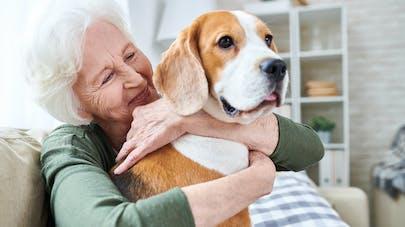Vieillir avec un animal : les avantages