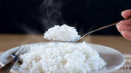 Le riz pourrait réduire l'obésité