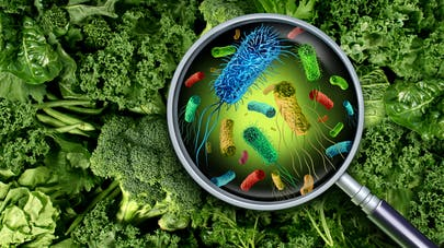 Anxiété : l'atténuer en régulant le microbiote intestinal