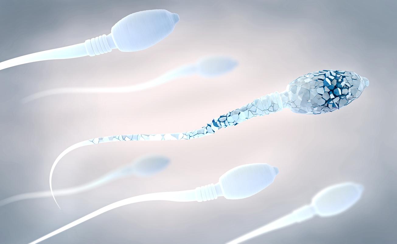 Se dice que el esperma suizo es uno de los peores de Europa |  Salud ...