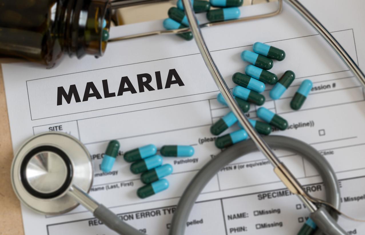 Crise de paludisme : quel traitement ? | Santé Magazine