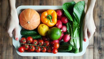 Le régime vegan de 22 jours prôné par Beyoncé décrié par des nutritionnistes