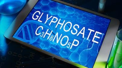 Du glyphosate retrouvé dans l'urine des habitants de Belle-Ile-en-Mer