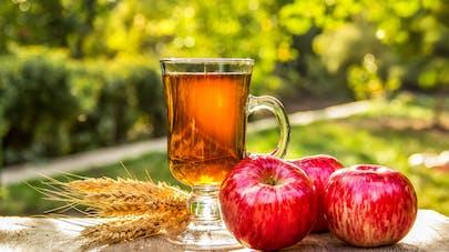 Plus d'aliments riches en flavonoïdes pour vivre plus longtemps