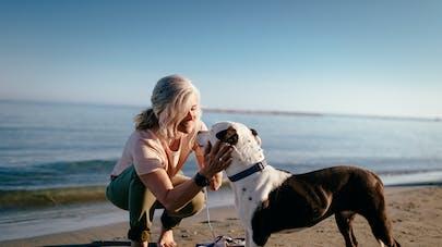 Avoir un chien est associé à une meilleure santé cardiovasculaire
