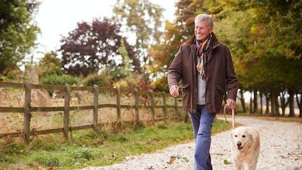 Avoir un chien augmenterait l'espérance de vie selon une étude