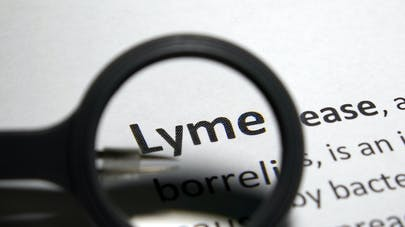 Lyme : sa forme chronique, un syndrome de fatigue chronique ?