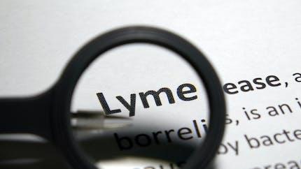 Lyme : sa forme chronique serait en fait un syndrome de fatigue chronique