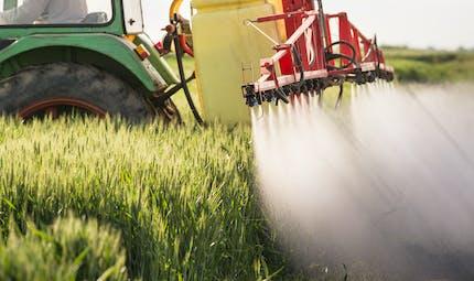 Trente-six produits à base de glyphosate retirés de la vente en France