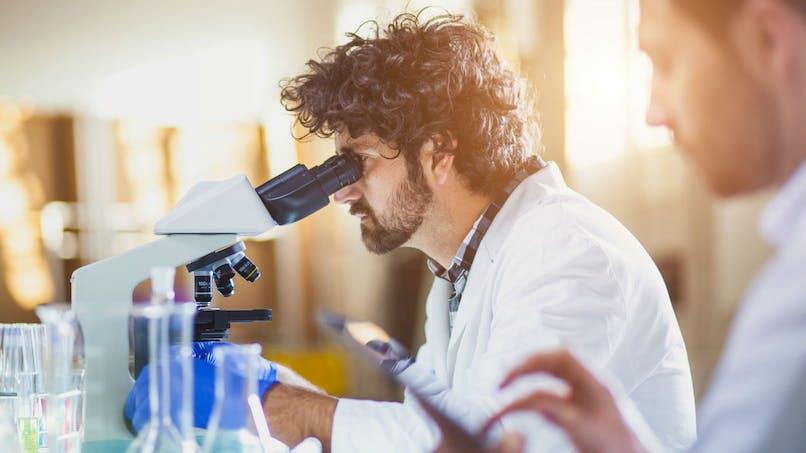 La découverte d'une cellule immunitaire ouvre la perspective d'une thérapie anticancéreuse universelle