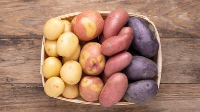 La pomme de terre : votre alliée pour l'hiver