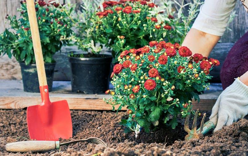 femme et jardinage