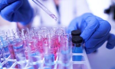 Rien ne prouve que le coronavirus a été créé en laboratoire : les dessous de l'infodémie sur le Covid-19