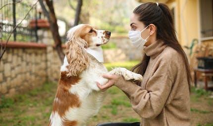 Covid-19 : une nouvelle étude sur les animaux domestiques
