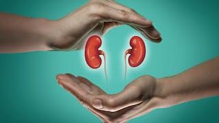 Diabète et reins: qu'est-ce que la néphropathie diabétique?