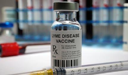 Maladie de Lyme : un vaccin contre les morsures de tiques bientôt commercialisé ?