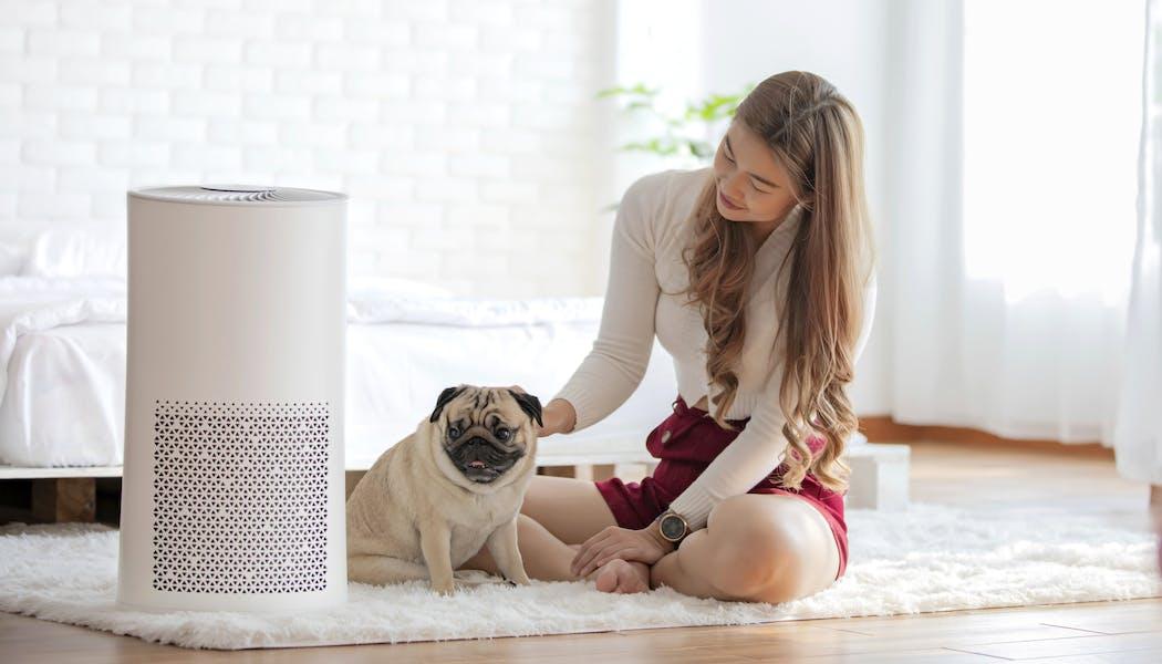 Dépolluer sa maison avec un purificateur d'air