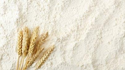 Comment bien choisir sa farine ?