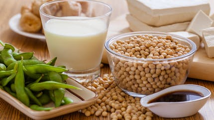 Le soja pourrait aider à venir à bout du cancer des os