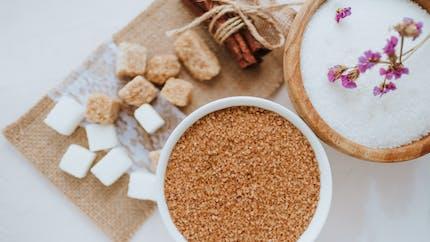 Une étude révèle que le fructose aggrave les maladies inflammatoires chroniques de l'intestin