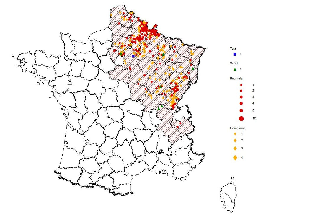 Régions à risque d'hanavirus en France métropolitaine