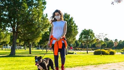 Covid-19 : promener son chien augmenterait le risque de contamination de 78% (étude)