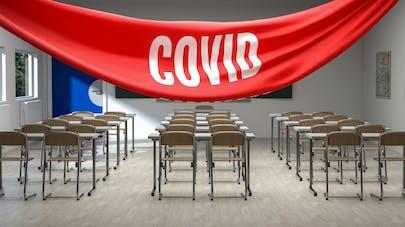 Covid-19 : une carte collaborative pour recenser le nombre de cas dans les écoles