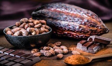Une nouvelle bonne raison de craquer pour le cacao