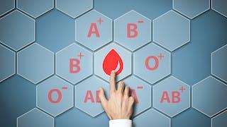 """Perte de poids : le régime """"groupe sanguin"""" serait inefficace (étude)"""