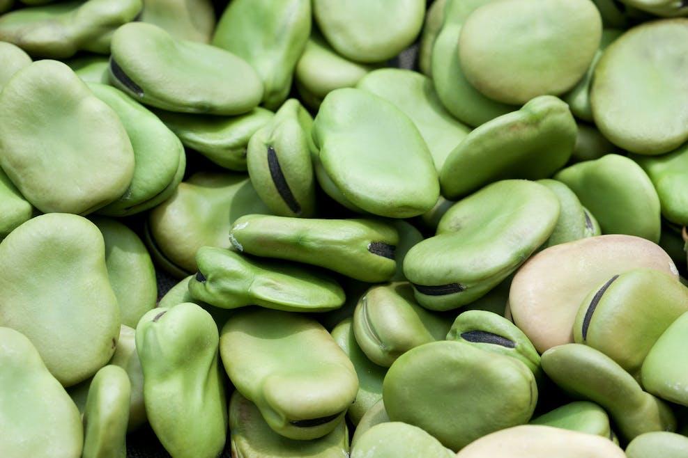 Les bienfaits des fèves
