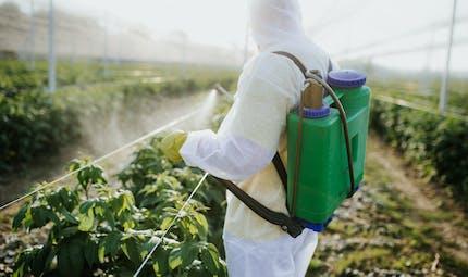 Une centaine d'OGM autorisés dans l'alimentation