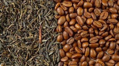Café et thé vert réduiraient le risque de décès après une crise cardiaque ou un AVC