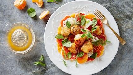 Saint-Jacques snackées et salade d'agrumes