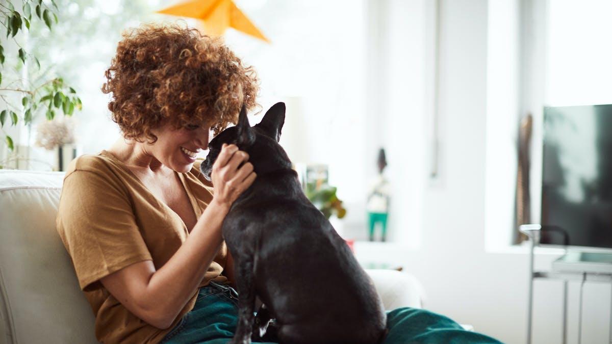 Comment communiquer avec les animaux ?