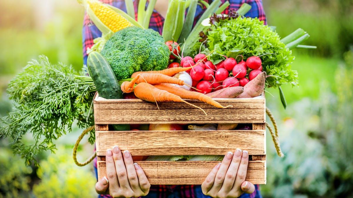 Manger bio et local en faisant ses courses à la ferme
