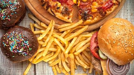 Le régime alimentaire occidental augmente l'inflammation intestinale et le risque de maladies associées