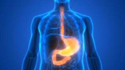 Œsophagite : reconnaître et soigner cette inflammation de l'oesophage