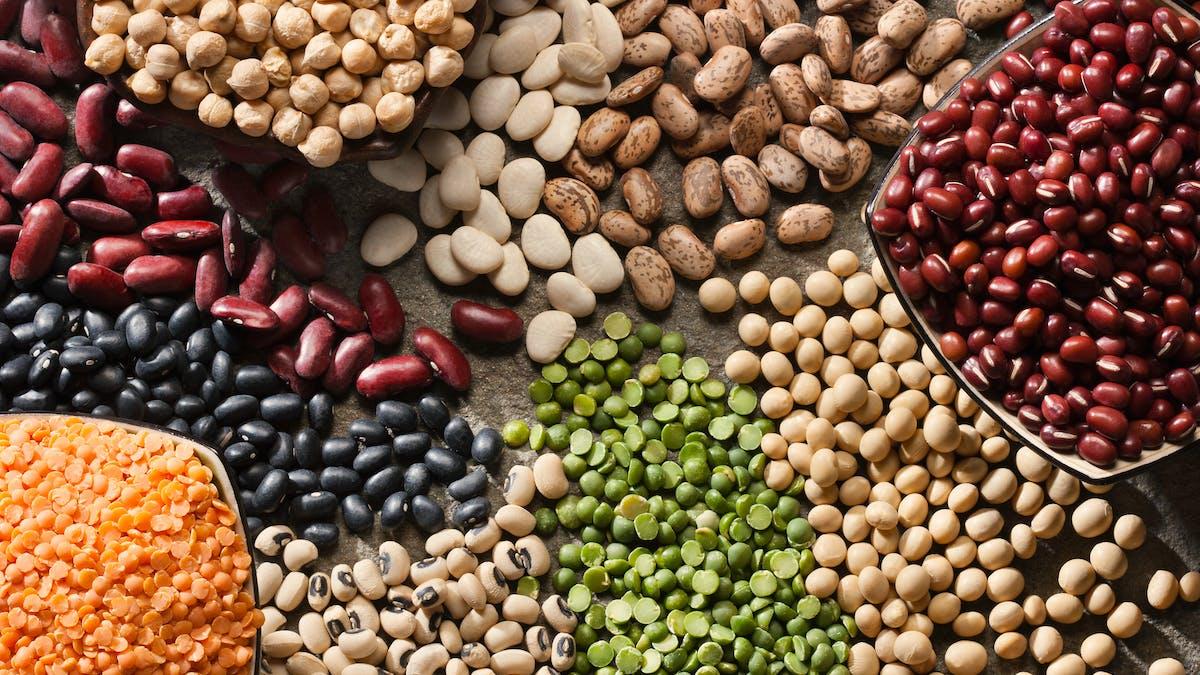 Une alimentation à base de plantes et un microbiome sain, un bouclier contre la sclérose en plaques
