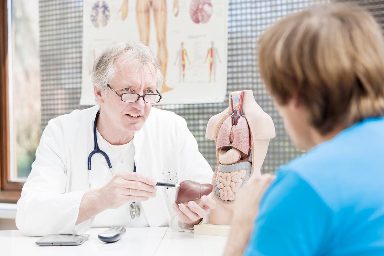 Le « bon cholestérol » peut protéger le foie