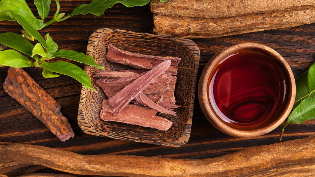 L'ayahuasca, boisson amazonienne psychédélique, pourrait aider à se sevrer de l'alcool et autres drogues