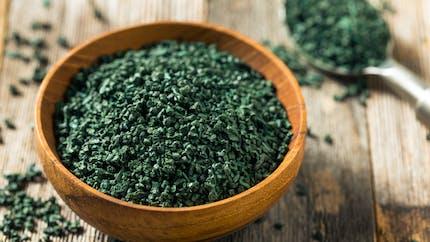 Spiruline : quels sont les bienfaits santé de cette algue ?
