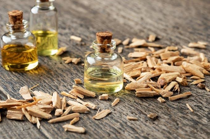 huile essentielle de cèdre de l'Atlas