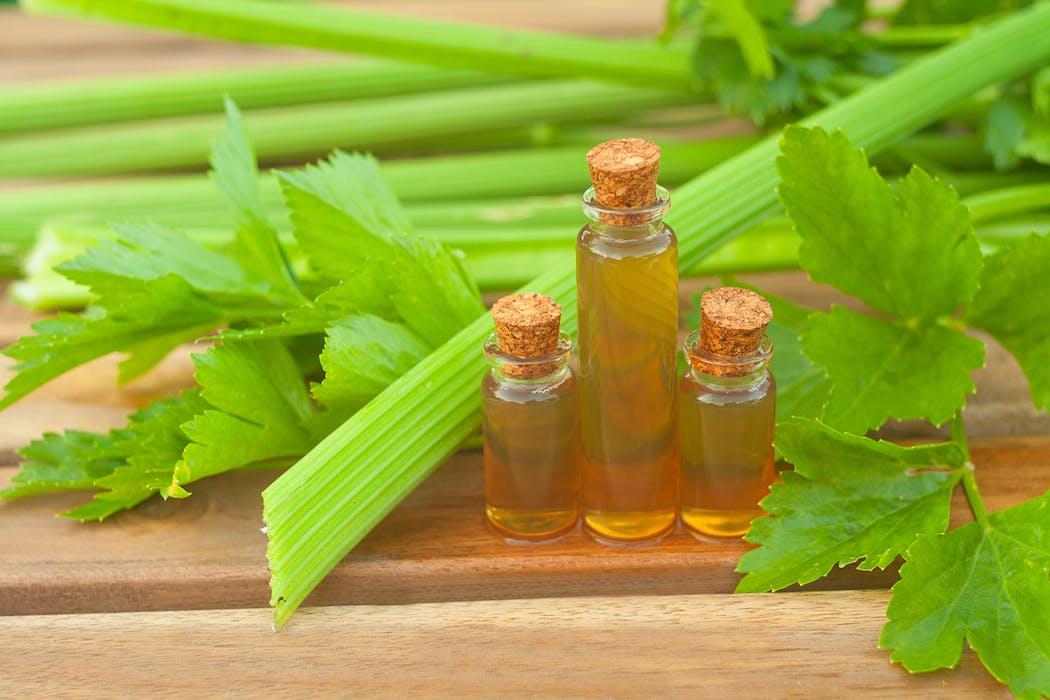 huile essentielle de céleri