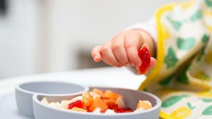 Comment limiter les pesticides et les nitrates dans les repas de bébé ?