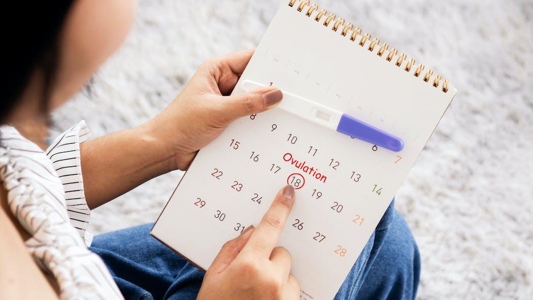 Ovulation tardive : causes et répercussions sur la fertilité