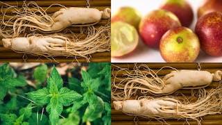 Phytothérapie: 5 plantes efficaces contre la fatigue