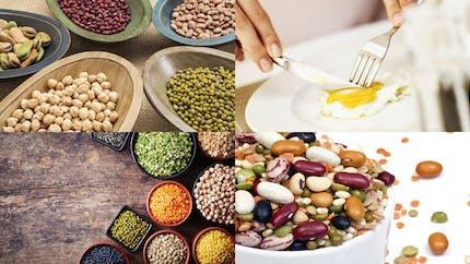 Végétarien: 10 astuces pour ne manquer de rien